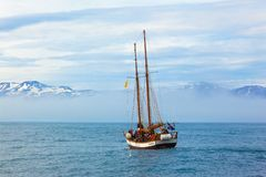 Ship with tourists on whale safari in the sea against the background of snow-capped mountains.  Iceland stock images