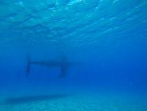 Ship Underwater Royalty Free Stock Photo