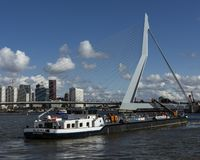 Ship Walburg sailing towards Erasmus bridge Rotterdam royalty free stock photos