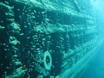 Ship wreck. In the Red Sea in Egypt Stock Photography