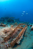 Ship wreck. With school of fish Royalty Free Stock Photography