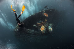 Ship wreck with free diver Royalty Free Stock Images