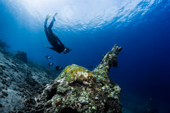 Ship wreck with free diver Stock Photography