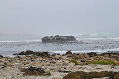 Ship Wreck on Westcoast South Africa. In Hondeklip Bay Stock Images