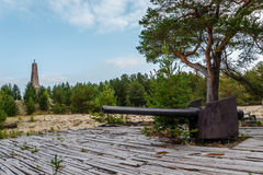 Shipboard gun on island Mudju Royalty Free Stock Photos