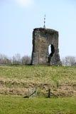 SHIPLEY, ЗАПАДНОЕ SUSSEX/UK - 16-ОЕ МАРТА: Взгляд руин Knepp Стоковое Фото