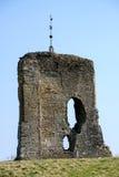 SHIPLEY, ЗАПАДНОЕ SUSSEX/UK - 16-ОЕ МАРТА: Взгляд руин Knepp Стоковое фото RF