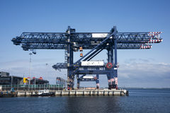 Shipping container cranes Stock Photos