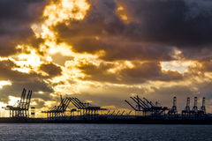 Shipping container cranes Royalty Free Stock Images