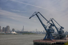 Shipping Cranes in Shanghai Royalty Free Stock Photography