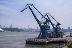 Shipping Cranes in Shanghai Stock Image