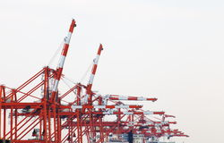 Shipping dock. On sumida river at tokyo japan royalty free stock photo