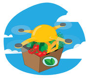 Shipping drone delivering fresh food Stock Photography