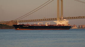 Shipping Freighter And Suspension Bridge Royalty Free Stock Image
