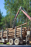 Shipping timber. Royalty Free Stock Images