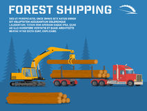 Shipping timber. Loading felled trees in the timber crane Stock Photos