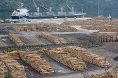 Shipping timber Royalty Free Stock Photography