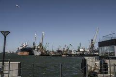 ships Arkivbild