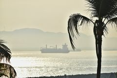 Ships at Anchor. Cargo ships at anchor in Manzanillo Bay on a misty morning with palm trees Royalty Free Stock Images