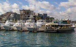 Ships in Cabo  San Lucas Marina Stock Photography