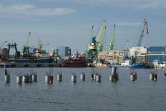 Ships and cranes in the harbour. Ships in the harbour, port Klaipeda Royalty Free Stock Image