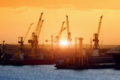 Ships and cranes on sunset Royalty Free Stock Image