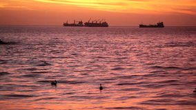 Ships at Dusk, Chile. Ships at Dusk, Valparaiso stock footage