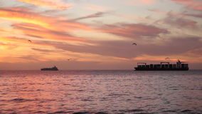 Ships at Dusk, Chile. Ships at Dusk, Valparaiso. Chile stock video footage