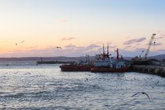 Ships and fishing boats are moored in docks. Seagulls fly over ships. Sunset Royalty Free Stock Photo