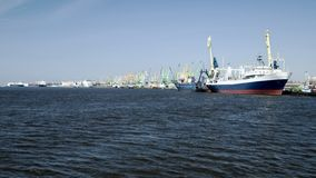 Ships in the harbour. Port Klaipeda Stock Image