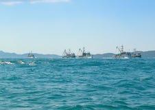Ships on the horizon. Adriatic sea. Fishing fleet stock image