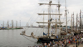 Ships rally. In Gdynia summer Royalty Free Stock Photo