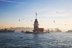 Ships, seagull, dolphin, Maiden tower in the  Bosphorus Stock Images