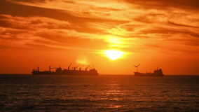 Ships at Sunset, Timelapse. Cargo Ships at Sunset, Chile stock video