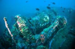 Shipwreck bunaken sulawesi indonesia underwater Royalty Free Stock Photos