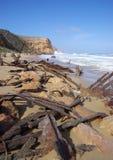 Shipwreck de Ethel imagens de stock