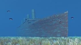 Shipwreck, fish and sea anemones Stock Photos