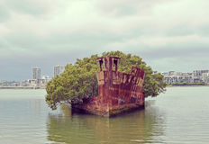 Shipwreck with floating forest Royalty Free Stock Photo