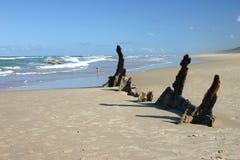 Shipwreck na areia fotos de stock