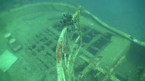 Shipwreck on the Seabed. Shoot of Shipwreck on the Seabed, Red Sea stock footage