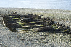 Sparse ribs of small shipwreck on shore Royalty Free Stock Photography