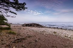 Shipwreck Swiks on the swedish shore by Trollskogen stock photography