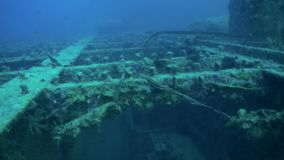 Shipwreck underwater in Red Sea Egypt. Ghost ship background of fish in the blue lagoon on coral reef. Extreme tourism.Deep diving stock footage