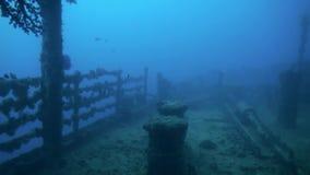 Shipwreck underwater in Red Sea Egypt.