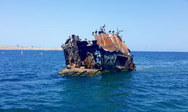 Shipwrecked boat and seabirds. Shipwrecked boat near Cabagua island Venezuela. There are some seabirds above the rusty abandoned ship stock photography