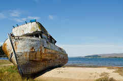 Shipwrecked Boat. In Tomales Bay California Royalty Free Stock Photography