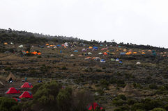 Shira camp on Machame route. Royalty Free Stock Photos
