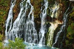 Shirahige vattenfall och blåttflod Arkivbild
