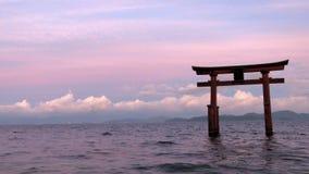 Shirahigetorussen in Meer Biwa in Japan stock fotografie