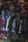Shiraito cade in autunno fotografie stock libere da diritti